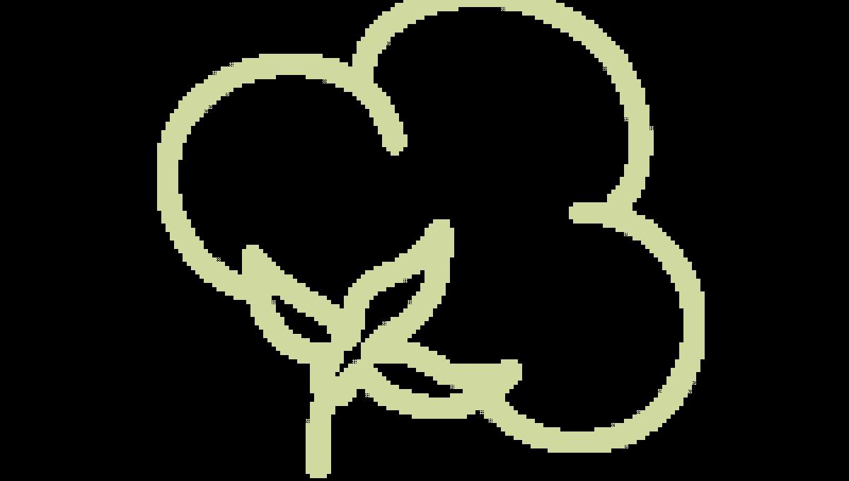 Futon Mattress Icon
